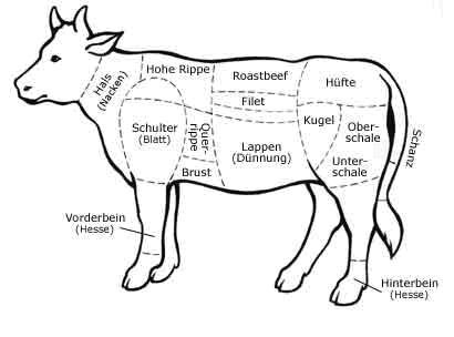 diagram of cow plate of cow wiring diagram